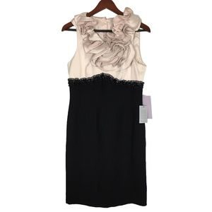 NWT JS Collections Size 10 Cream and Black Dress